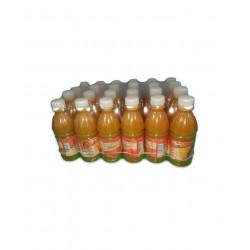 Néctar de mango 24x300ml -...