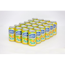 Refresco Piñita 24x355ml -...